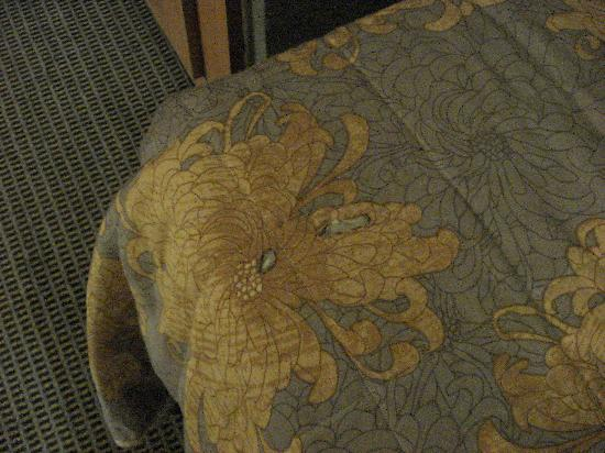 Astor Hotel Athens: The bed cover!
