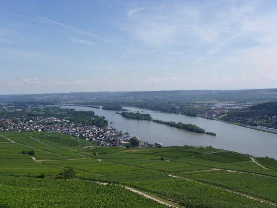 Ruedesheim am Rhein, Germania: Aussicht vom Niederwalddenkmal.