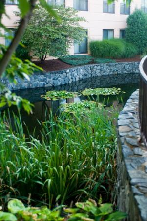 Embassy Suites by Hilton Boston Marlborough : Water garden
