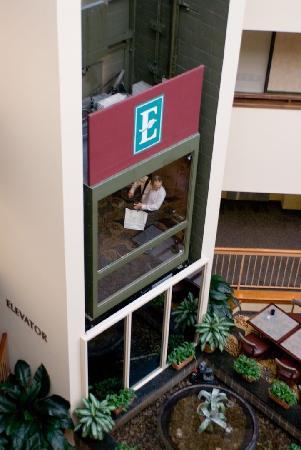 Embassy Suites by Hilton Boston Marlborough : Inside