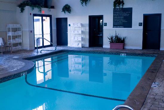 Embassy Suites by Hilton Boston Marlborough: Pool