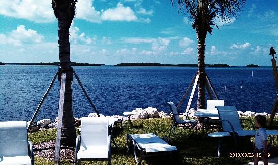 Islander Bayside Townhomes, a Guy Harvey Outpost: view from pool, and dock into bay...