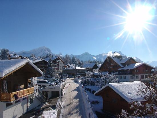 Chalet Balthazar: View of the mountains