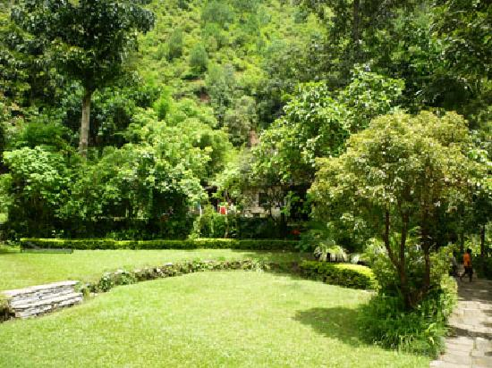 The Last Resort: Jardín