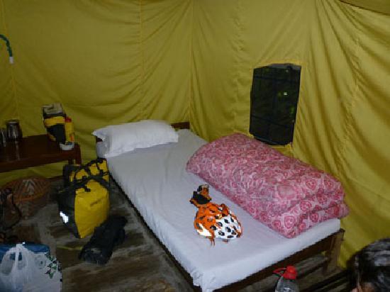 The Last Resort: Habitación de 4 camas
