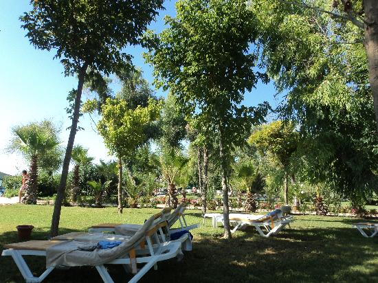 Queen's Park Le Jardin Resort: Les jardins