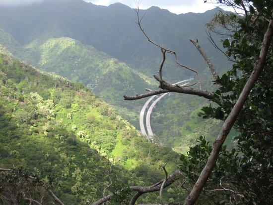 Aiea Loop Trail: view of H3 from trail