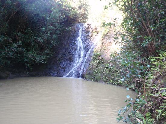 Laie Falls Trail : The 15 foot Laie Falls