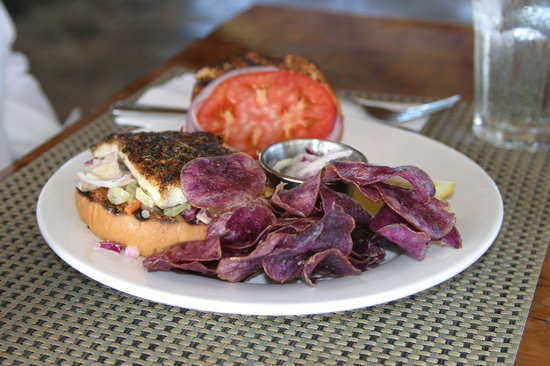 Oasis on the Beach: Lunch, fish sandwich