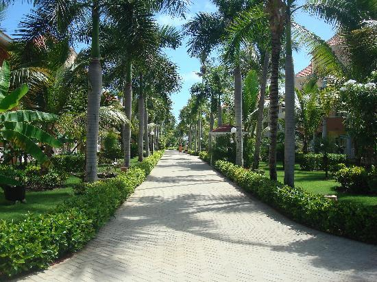 Luxury Bahia Principe Ambar Blue Don Pablo Collection: Resort area