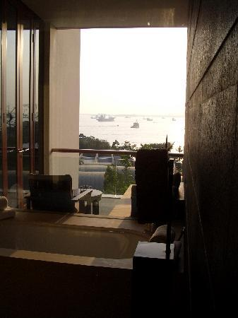 Capella Singapore: view from the shower