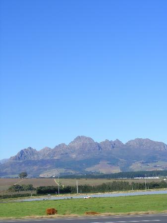 Port Elizabeth, Sydafrika: 포트 엘리자베스 가는 길