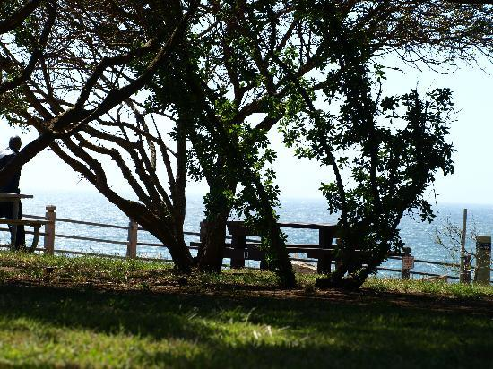 The Point Vicente Interpretive Center: Picnic tables with a view