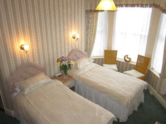 Ivydene Guest House: Superior Twin Room