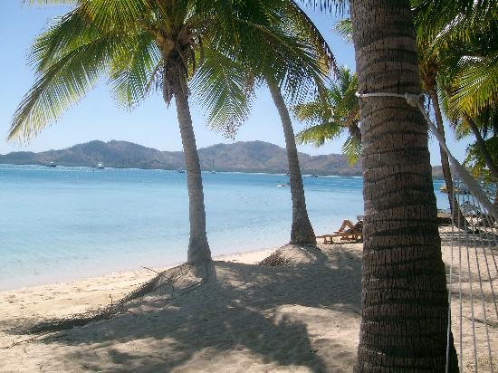 Plantation Island Resort: View from our hammock