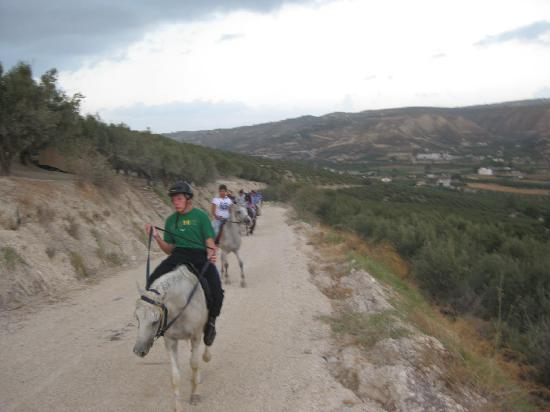 Finikia Horseriding : Horseriding group