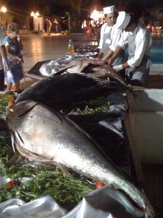 """Midoun, Tunísia: Soirée grillades"""" poisson"""""""