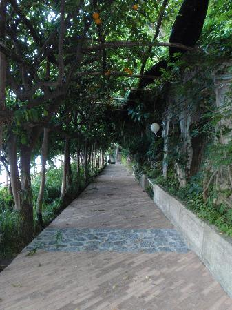 Santa Caterina Hotel : One of the pathways on preperty