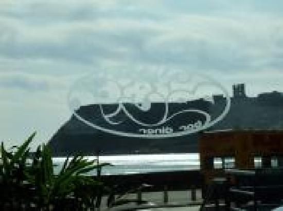 Blue Crush Bar & Diner: THE VIEW OF THE CASTLE