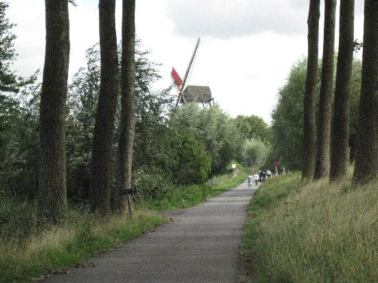 iRoom: Took a Bike to Damme - Beautiful