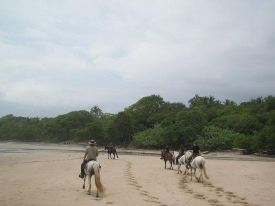 Boca Nosara Tours