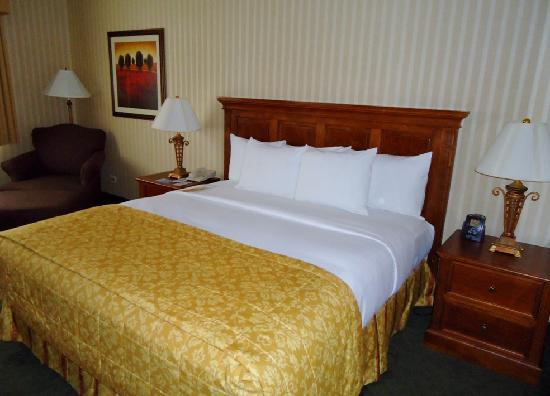 Hilton Northbrook: Bedroom