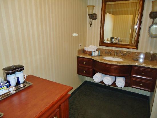 Hilton Northbrook: Bathroom