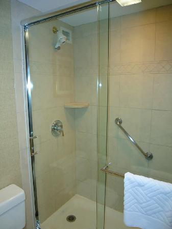 Hilton Northbrook: Shower