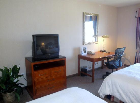 Hilton Garden Inn Albuquerque Airport: Room