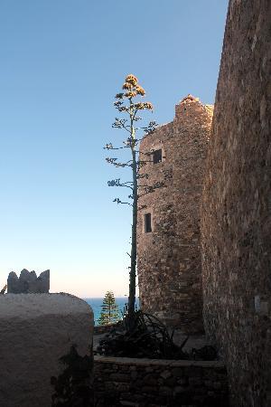 Aeolis Boutique Hotel: borgen i naxos
