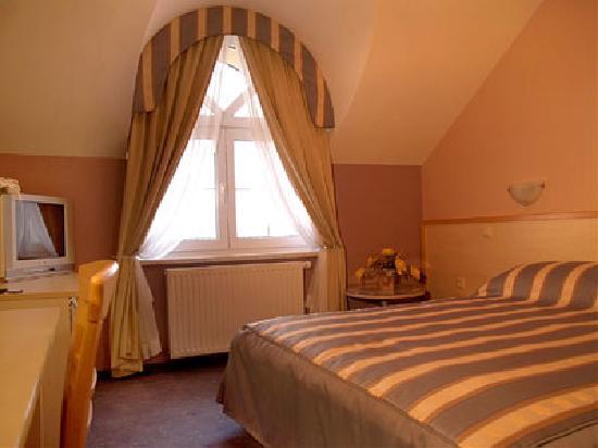 Hotel Dakovo : bussines room