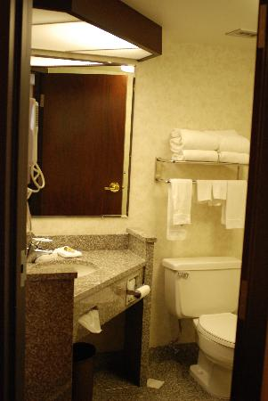 Drury Inn & Suites St Joseph: Bathroom