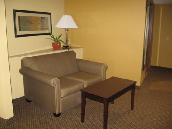 Comfort Suites Gettysburg: Sofa Area of Room