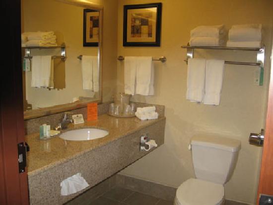 Comfort Suites Gettysburg : Bathroom
