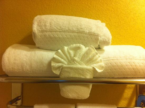 ‪‪Hilton Garden Inn Phoenix Airport‬: Great Towels!‬