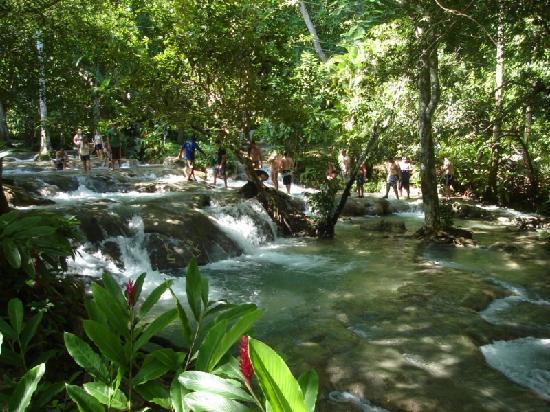Dunn's River Falls & Park, Ocho Rios