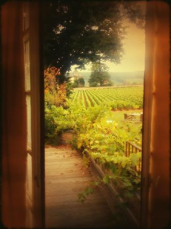 Aloxe-Corton, Fransa: Terrasse chambre 44