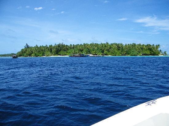Biyadhoo Island Resort: L'approdo