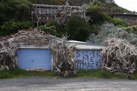 Otago Peninsula: Harington Point