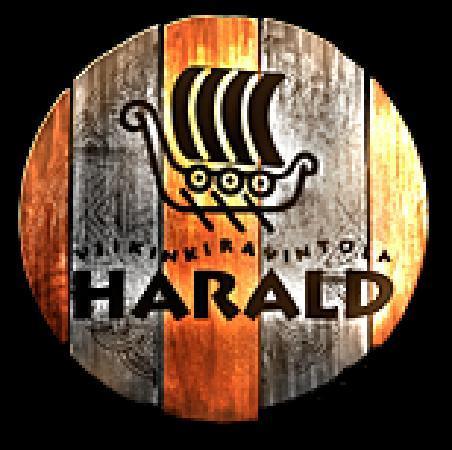 Viikinkiravintola Harald : Viking restaurant Harald, Aurakatu 3