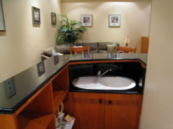 Elite Suites: Gold Suite - One room - Kitchenette