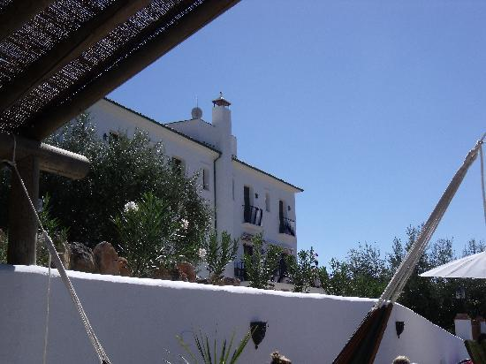 Casa Olea : View of the house from the pool