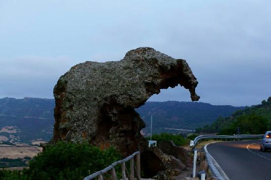 Cerdeña, Italia: Sardegna del nord 2010