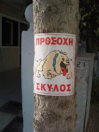 Dollitsa Studios: Attack Dog Warning at Hotel Entrance, very welcoming