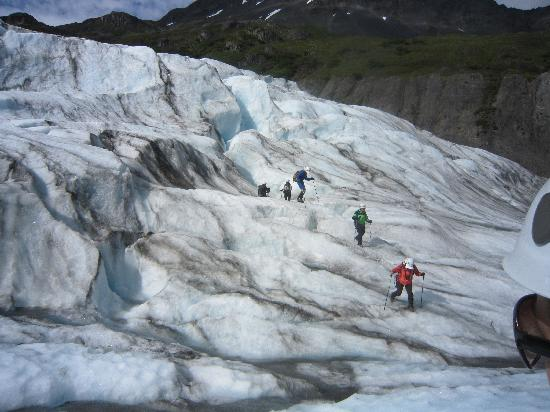exit glacier guides hike picture of exit glacier guides day