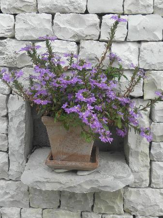 Hotel Le Peu Breton : Niche fleurie