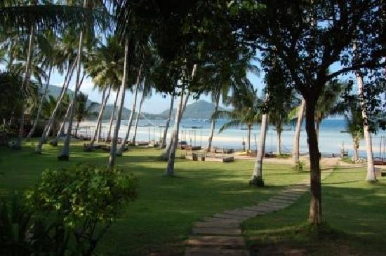 Koh Tao Cabana: Garden