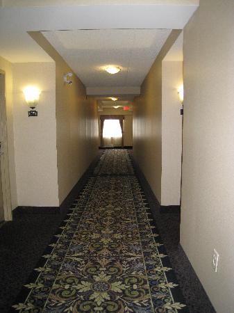 Staybridge Suites London: 3rd floor hallway