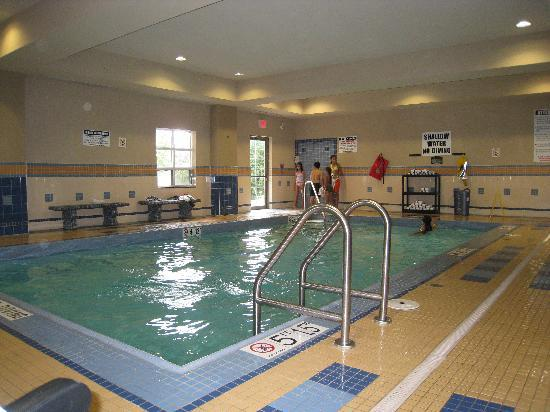 Staybridge Suites London: Tiny pool