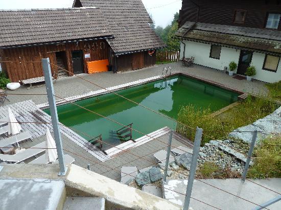 Art-Lodge in den Nockbergen: Pool